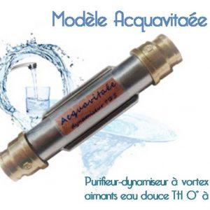 Dynamiseur à vortex